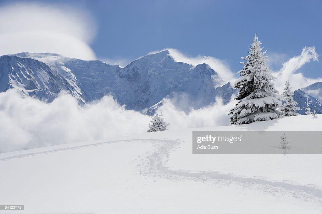 Footprints through fresh snow : Stock Photo