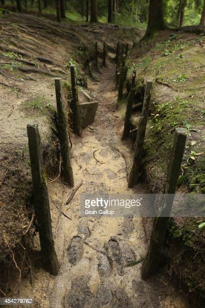 Footsteps from recent visitors are visible among the remains of a former French communications and supply trench from the World War I Battle of...