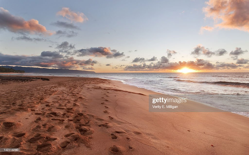 Footsteps in sand : Stock Photo