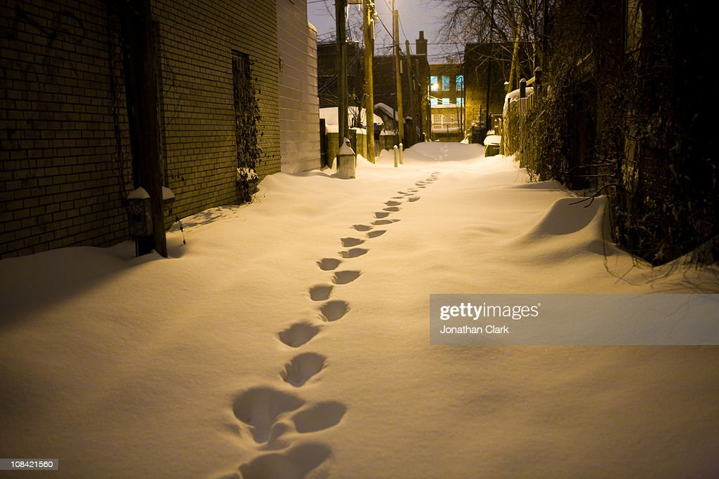 Footsteps in snow : Stock Photo