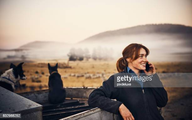for all your farming needs, she's the one to call - shepherd stock pictures, royalty-free photos & images