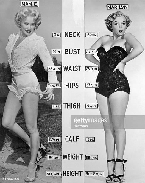 For comparison's sake here's how Mamie Von Doren and Marilyn Monroe shape up Mamie is a little shorter and weighs a few pounds less It can be noted...
