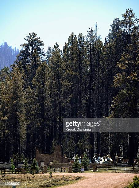 A for sale sign is posted in front of large house that burned to the ground after the Wallow Fire roared through the Apache National Forest on June...