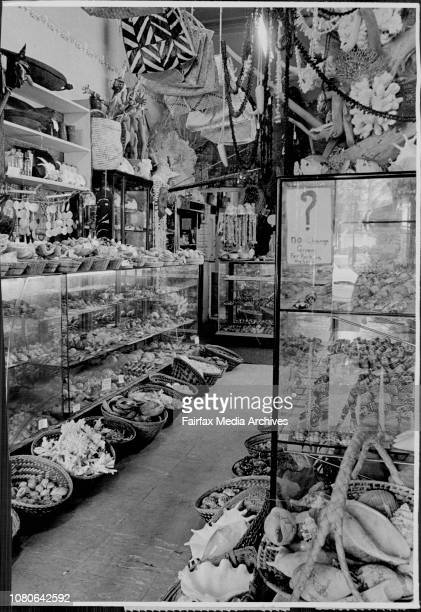 For story on shell and marine specimens shop at George Street North. Interior view in the shop.The shell shop has customers across the world.***** by...