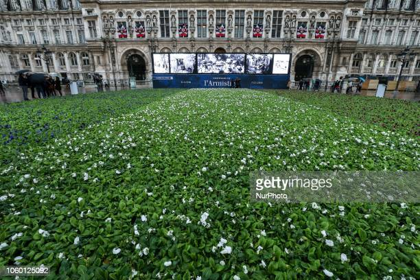 For the centenary of the Armistice of the First World War415 flowers colored like the French flag have been set in front of Paris city hall Visible...