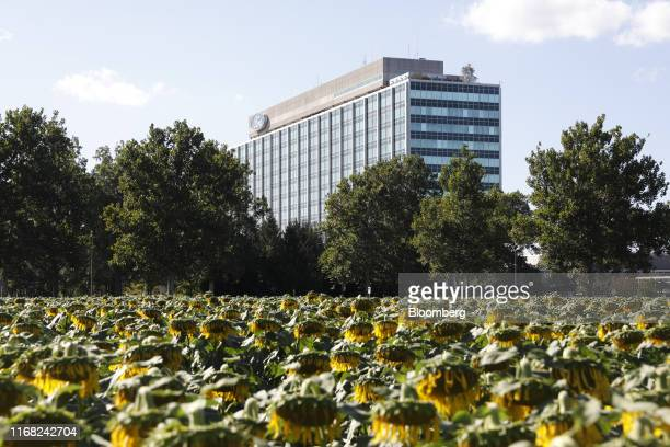 Ford Motor Co. World headquarters stands behind a sunflower patch in Dearborn, Michigan, U.S., on Saturday, Sept. 14, 2019.The United Auto Workers...