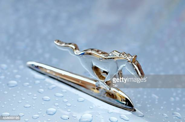 ford mustang - hood ornament stock pictures, royalty-free photos & images