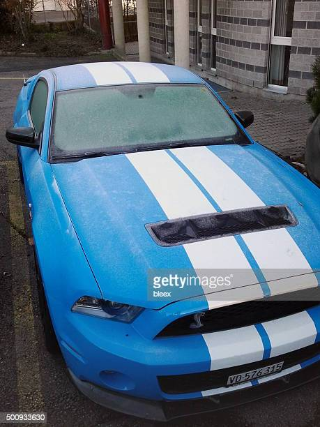 ford mustang shelby gt 500 - number 500 stock pictures, royalty-free photos & images