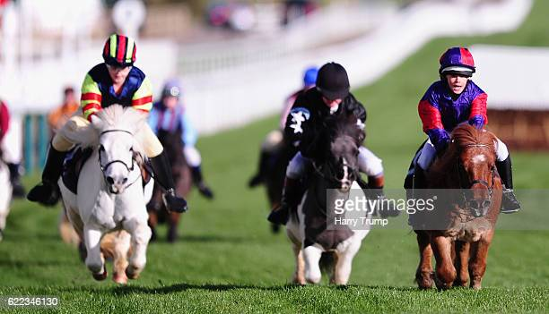 Fordleigh Sophia ridden by Annabel Candy on their way to victory in the Bonnie Shetland Race at Cheltenham Racecourse on November 11 2016 in...
