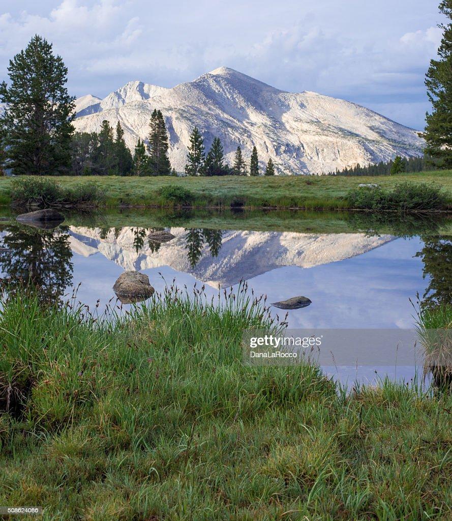 Foreground Reflection : Stock Photo