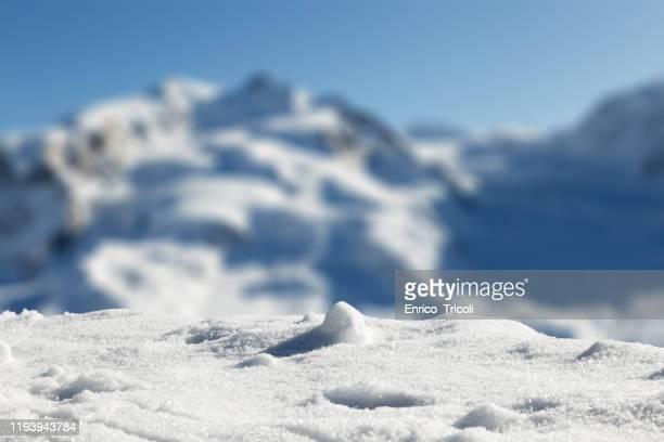 foreground with fresh snow, with swiss mountains in the blurred background. - snow stock-fotos und bilder