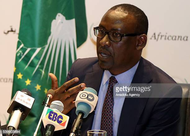 Foreign Minister of Mali Abdoulaye Diop delivers a speech on 27th Africa France Summit will be held on January 2017 in Mali's capital Bamako during a...