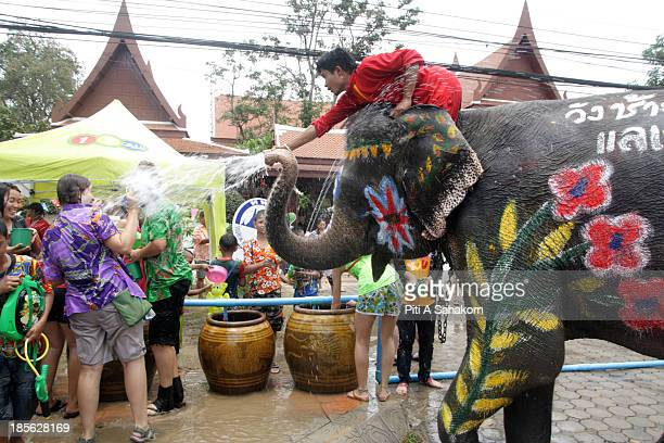 Foreign tourists are splashed during a water battle with an elephant during Songkran Thailand's New Year festival The festival marks the start of the...