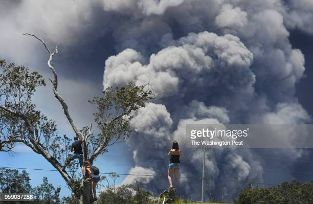 VOLCANO HI Foreign tourists climb trees on the 18th hole of the Volcano Golf and Country Club to view the plumes of smoke coming from the Halemaumau...