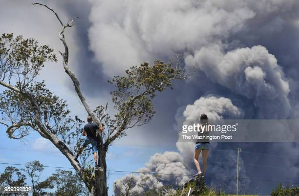 VOLCANO HI Foreign tourists climb trees on the Volcano Golf and Country Clubs 18th hole to view the plumes of smoke coming from the Halemaumau Vent...
