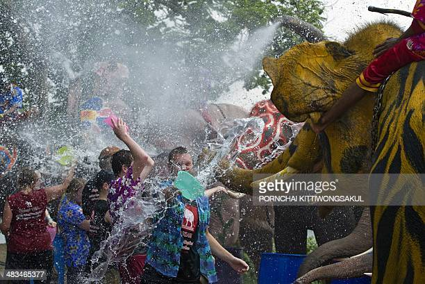 Foreign tourists splash water as they take part in water battles with elephants as people celebrate ahead of the Songkran Festival for the Thai New...