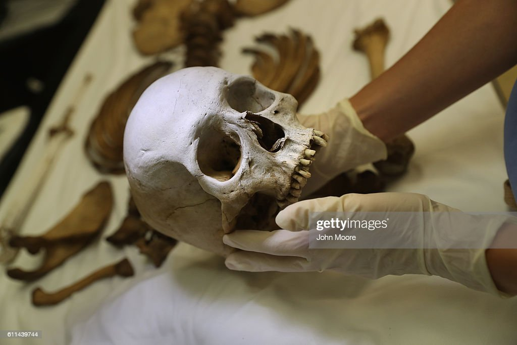 Forensic anthropologist Jennifer Vollner examines the skeleton of an undocumented immigrant found in the desert at sent to the the Pima County Medical Examiner on September 29, 2016 in Tucson, Arizona. Hundreds of migrants die every year, most from dehydration, in the desert while crossing illegally from Mexico into the United States. Forensic anthropologists study personal effects and bodily remains in an effort to identify the bodies and reunite them with loved ones.