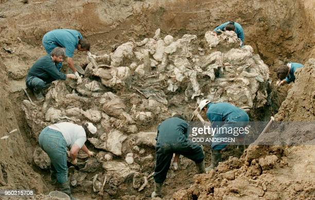 Forensic experts from the International war crimes tribunal in the Hague works on a pile of partly decomposed bodies, 24 July 1996 found in a mass...