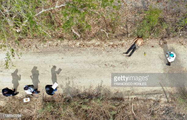 Forensic experts,investigators of the prosecution office and policemen work at the crime scene next to a man's corpse in the outskirts of Acapulco,...