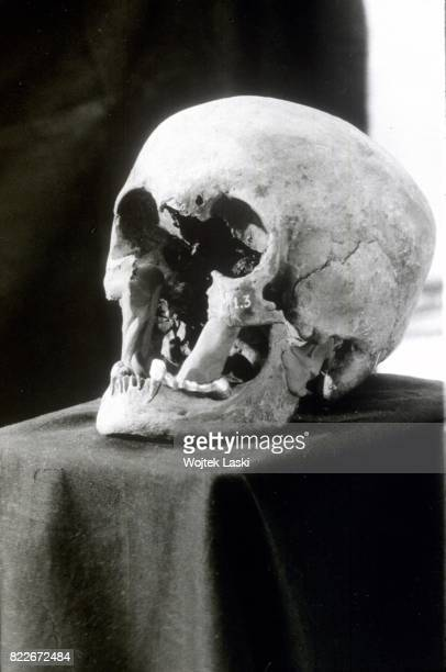 Forensic investigation into the authenticity of the remains of Russia's Royal family members exhumed the previous year Moscow Russia June 1992
