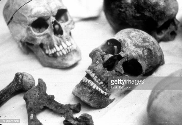 Forensic investigation into the authenticity of the remains of Russia's Royal family members The bones were dug up in a forest near Yekaterinburg in...