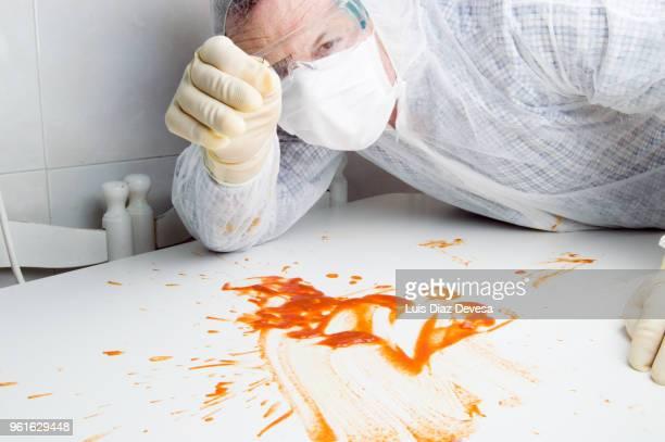 forensic investigator investigating - mord stock-fotos und bilder