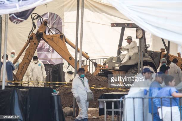 Forensic medicine officials start work of exhumation on mass grave in the town of Jojutla Morelos Mexico on March 21 2017