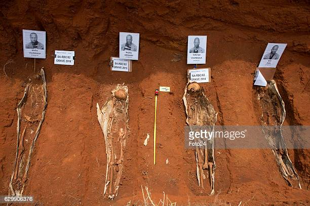 Forensic pathologists exhume the remains of political prisoners from a grave at Rebecca Street Cemetery on December 14 2016 in Pretoria South Africa...