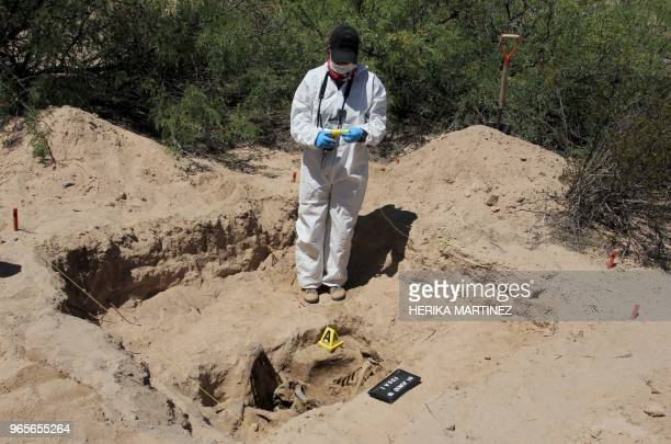 Forensic personnel from the Chihuahua Public Prosecutor's Office work at a clandestine grave where the remains of a person minus the skull were found...