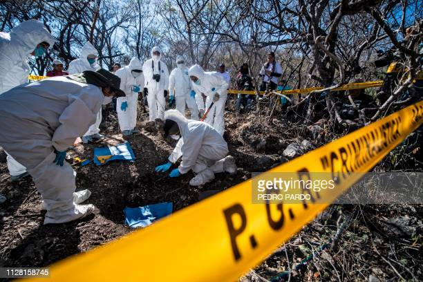 Forensic personnel of the Mexican Attorney General work in the exhumation of human remains found during the activities of the fourth National Search...