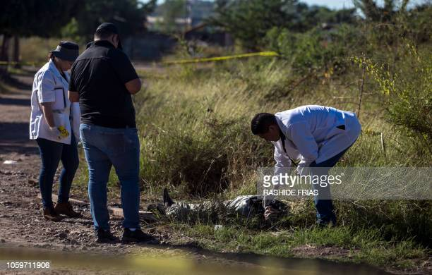 Forensic personnel work at the crime scene where a man was shot dead at Pipila neighborhood in Culiacan Sinaloa state Mexico on October 27 2018 In...