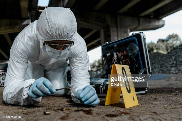 forensic scientist at work - forensic science stock pictures, royalty-free photos & images
