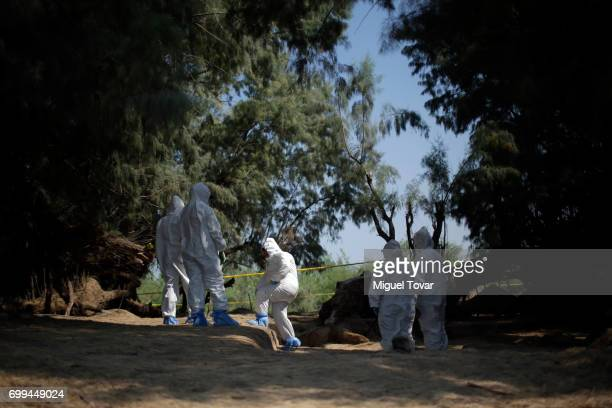 A forensic team and judicial authorities work with relatives of disappeared at the site where human remains were found in a clandestine grave on June...