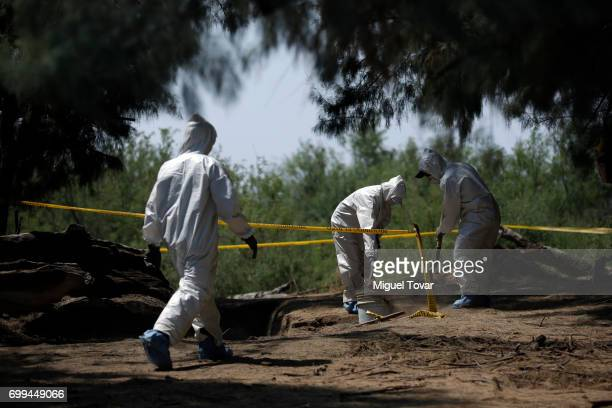 Forensic workers seek for human remains at the place where relatives of disappeared found a clandestine grave on June 19 2017 in Santa Elena at the...
