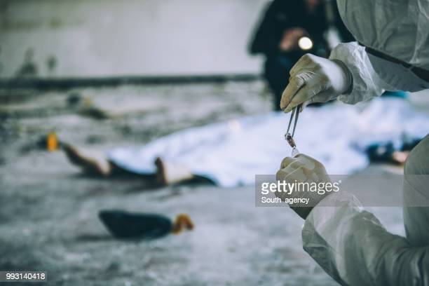 forensics found murder evidence - murder victim stock pictures, royalty-free photos & images