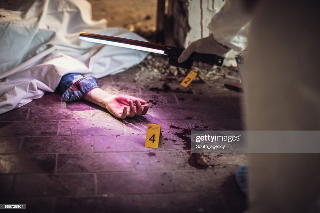Forensics looking for evidence : Stock Photo
