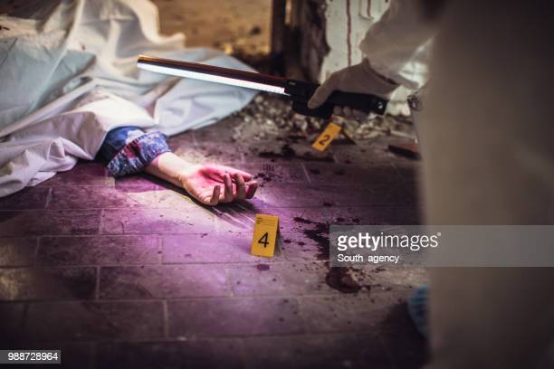 forensics looking for evidence - more dead cops stock pictures, royalty-free photos & images