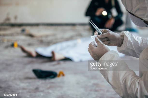 forensics man found evidence - criminal investigation stock pictures, royalty-free photos & images