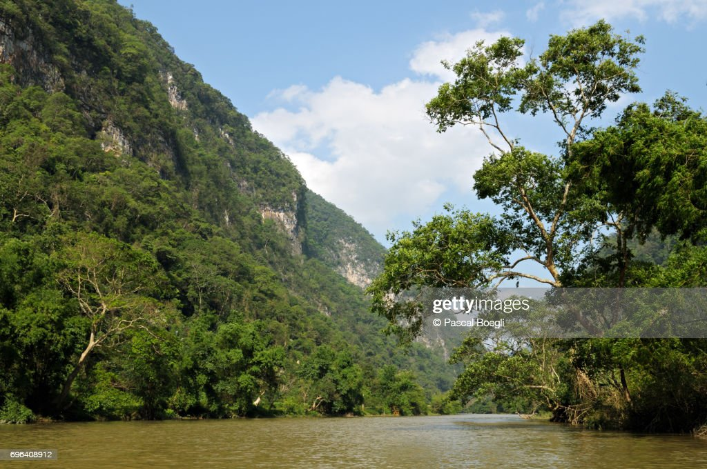 Forest and river, Ba Be National Park, north Vietnam : Stock Photo