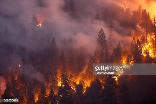 Forest burns in the Carr Fire on July 30, 2018 west of Redding, California. Six people have died in the massive fire, which has burned over 100,000...