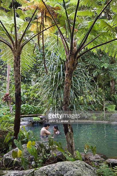 Forest Camp, Valencia, Negros began as a 6,000 square meter property originally used as the family's private picnic and camping grounds and with...