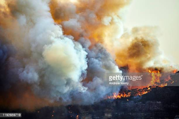 forest fire, bushfire with flames and sun illuminated smoke clouds at dusk on mountain ridge, blue mountains, australia - 噴出 ストックフォトと画像