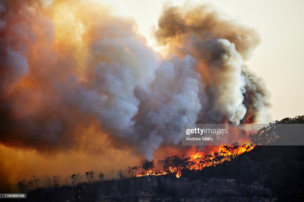 Forest fire, bushfire with flames and sun illuminated smoke clouds at dusk on mountain ridge, Blue Mountains, Australia : Stock Photo