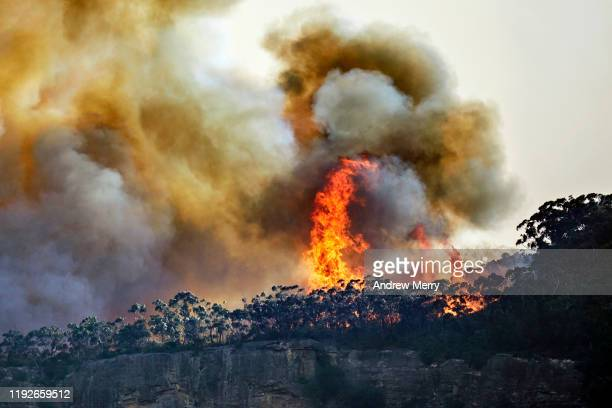 forest fire, bushfire with large flames and smoke clouds on tree lined cliff edge at dusk, blue mountains, australia - zerstörung stock-fotos und bilder