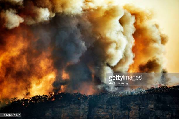 forest fire, bushfire with sun illuminated smoke clouds at dusk on mountain ridge, blue mountains, australia - australia fire stock pictures, royalty-free photos & images