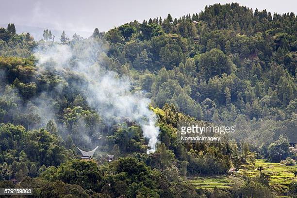 forest fire - rantepao stock photos and pictures