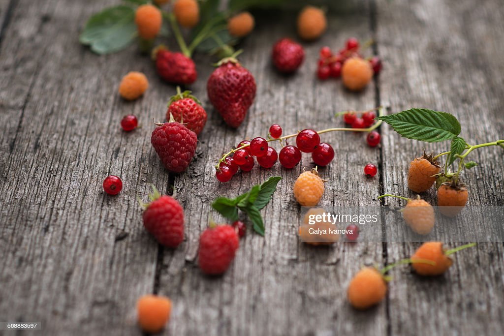 Forest fruits : Stock Photo