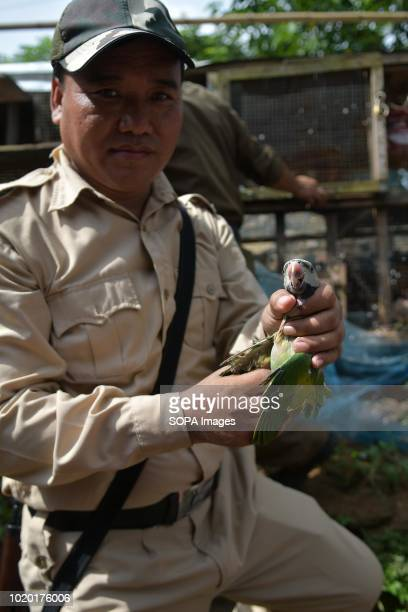 A forest guard displaying one of the rescued birds from the house Two dead birds and bones of animals were founded from a house The owner of these...