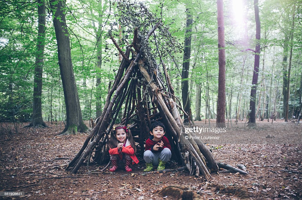Forest hut : Stock Photo