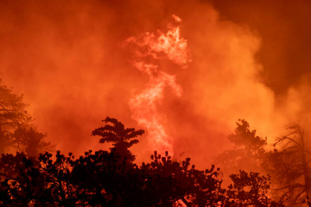 CA: Bobcat Fire Continues To Burn In Southern California